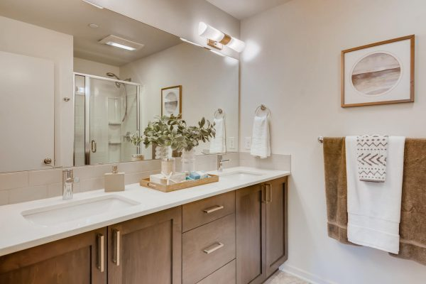 The Renzo at Westbrook by Sage Homes primary bathroom 1