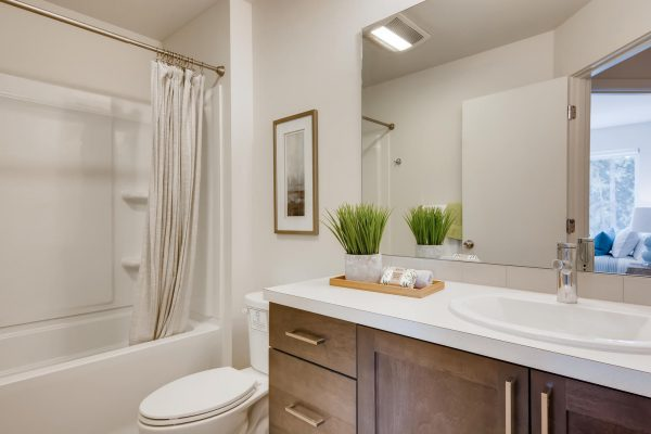 The Renzo at Westbrook by Sage Homes primary bathroom