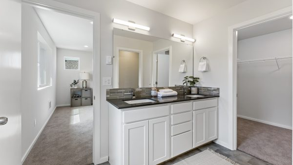 The Lautner at Malloy Terrace Lot 23 Primary Bathroom 1